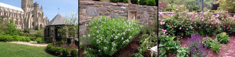 Bishops Garden1