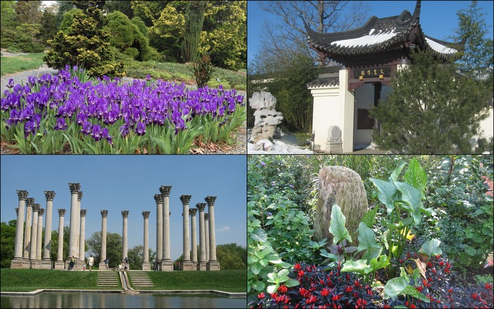 *The National Arboretum Is A Garden, A Park, And A Research Institution,  Part Of The USDA. Its 446 Acres Include World Famous Collections U2013 Of  Azaleas, ...
