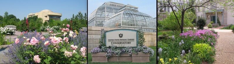 Click Here For A Slide Show And Video Of The U.S. Botanic Garden In May.