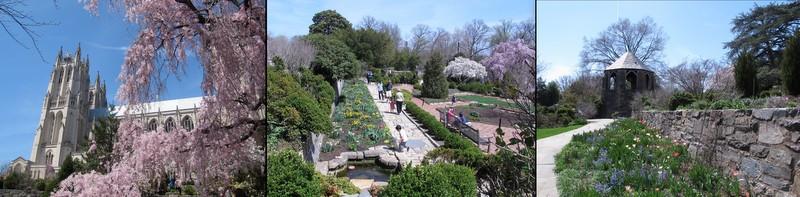 Bishops Garden2