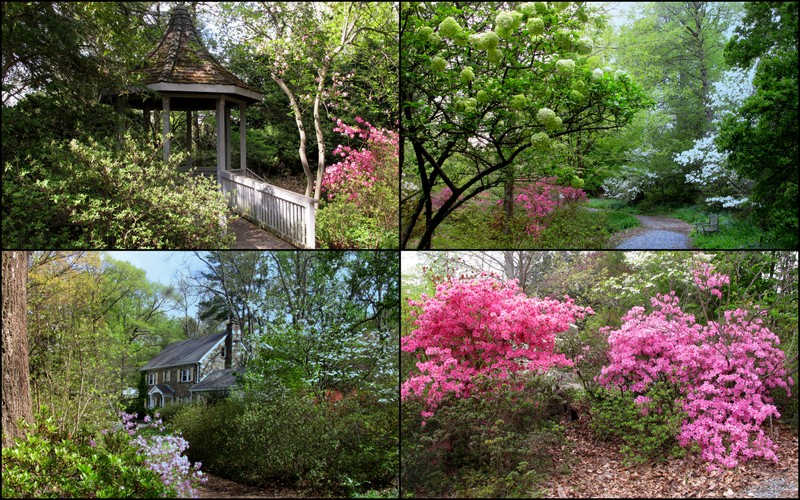 The Gardens, Managed By Montgomery Countyu0027s Brookside Gardens, Surround A  Residence That ...