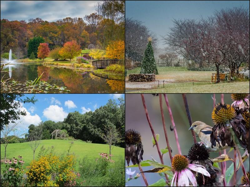 Attrayant Meadowlark Botanical Gardens Is A 95 Acre Public Garden And Park In Vienna,  Virginia. The Gardens Feature Three Ponds, Two Gazebos, An Island Bridge,  ...