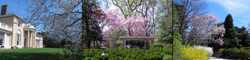 Tudor Place In April Dc Gardens