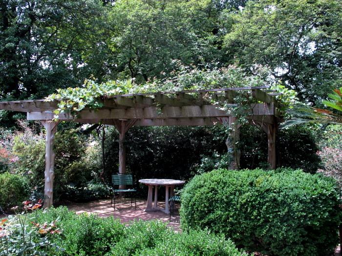 Tudor Place In June Dc Gardens