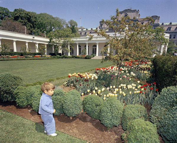 """ST-C112-1-63                     26 April 1963John F. Kennedy, (JFK, Jr.), in the Rose Garden[White spotting and light scratching in upper half of negative.]Please credit """"Cecil Stoughton. White House Photographs. John F. Kennedy Presidential Library and Museum, Boston"""""""