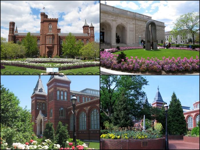 Smithsonian16