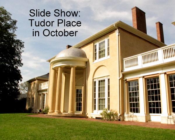 Tudor Place In October Dc Gardens