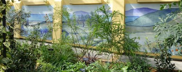 Mediterranean Room, U.S. Botanic Garden 14-001