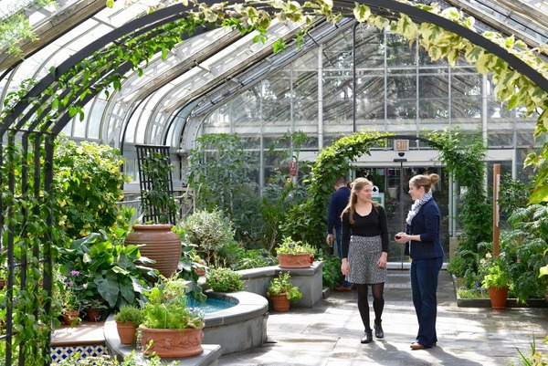 mediterranean room us botanic garden 3 - Us Botanic Garden