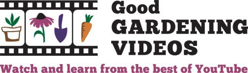 GGV logo_Hor_newTag