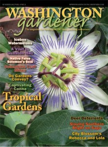 Washingtongardenermagazine