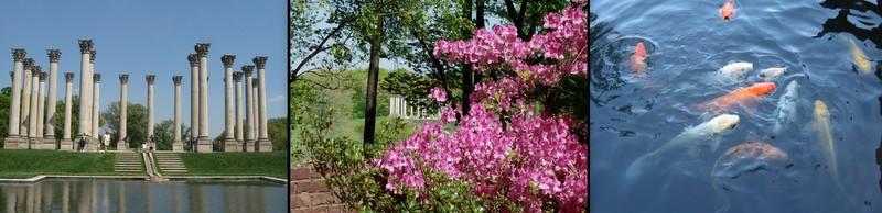 arboretum5