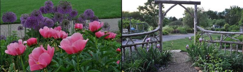 Fairfax GS Garden1