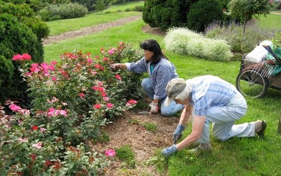 Volunteers at River Farm