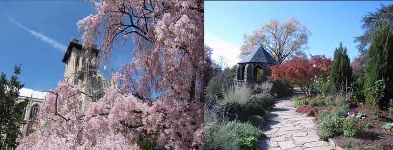 Bishops Garden3